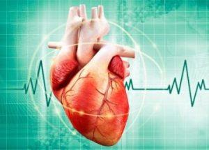 thiếu máu thiếu sắt có thể gây bệnh tim mạch