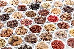 14 bài thuốc bổ máu Đông y giúp điều trị thiếu máu hiệu quả