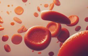 tăng hồng cầu trong máu